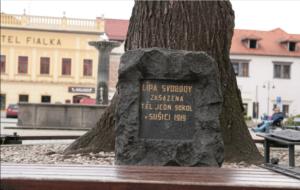 Lípa svobody na náměstí v Sušici