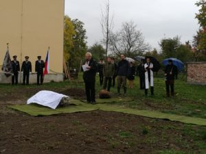Lípa republiky u Sokolovny v ul. Tyršova v Července
