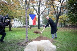 Strom republiky Ostravské univerzity v Ostravě