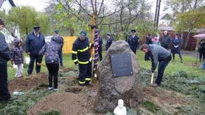 Lípa republiky kružberských hasičů na Kružberku