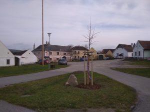 Lípa republiky v Plešovicích