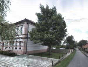 Lípa u školy v obci Klapý
